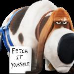 La vida secreta de tus mascotas 24