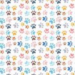 Papel digital la vida de tus mascotas 19