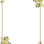 frame marco dorado 16
