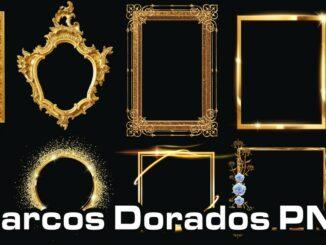 frames marcos dorados