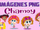imagenes png Chamoy