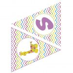 BABY SHOWER COLORES GIRL 14
