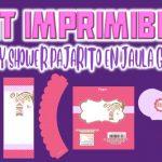 Kit Imprimible de Pajarito en Jaula para Baby Shower Niña