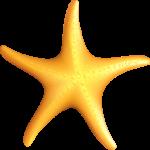 Estrella Luca