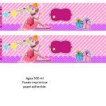 Kit Imprimible cumple Angelina Ballerina 08