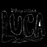 Logo Luca Negro