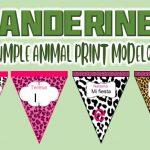 Banderines de Animal Print Modelo 2 para Cumpleaños