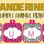 Banderines de Animal Print para Cumpleaños