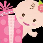 bebe baby shower nena rosa