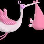 ciguenia baby shower