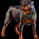 perro gta 5