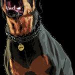 perro gta 5 2