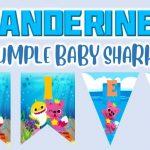 Banderines de Baby Shark para Cumpleaños