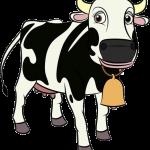 La Granja De Zenon Vaca Lola 34