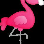 flamingo13