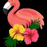 flamingo15