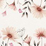 fondo crema rosa bonito