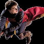 Harry Potter 11