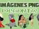 imagenes png Pocahontas